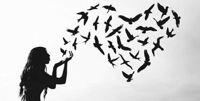liberdade-heder